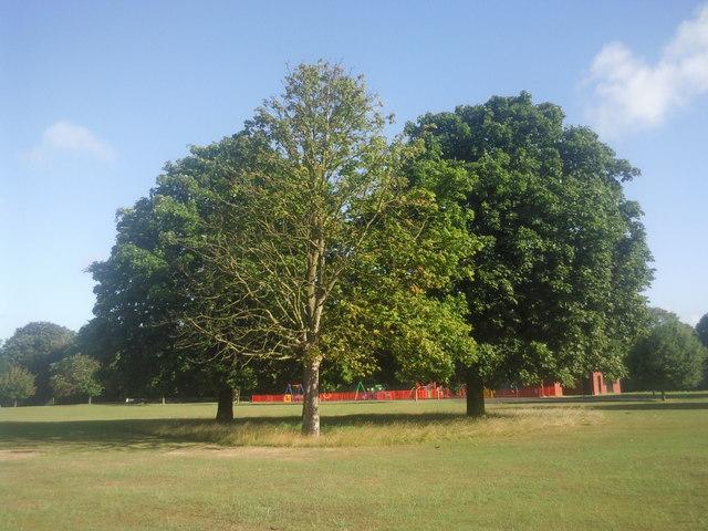 Fairy Hill Park