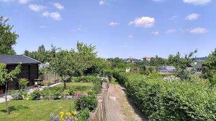 Kleingartenverein Süd-Ost e.V.
