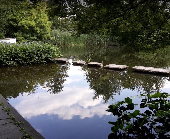 Alkenrather Teich