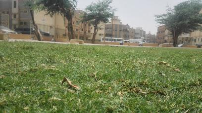 AL Wazarat Park