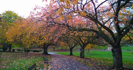 Pontefract Valley Gardens