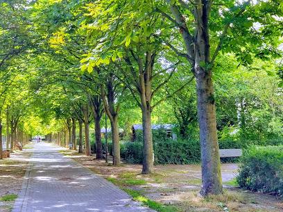Friedenspark - Ludwigshafen