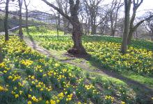 London Road Gardens