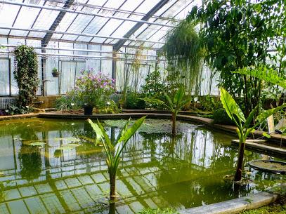 Botanischer Garten des KIT