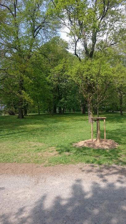 Haugerglacis (Ringpark)