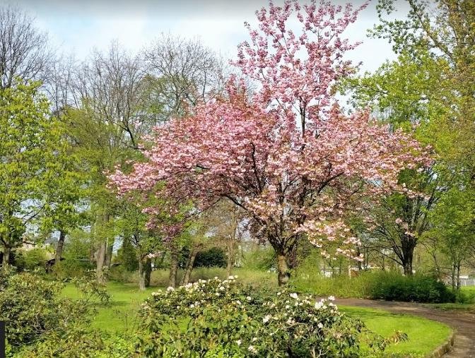 Marie Luise Pleißner Park