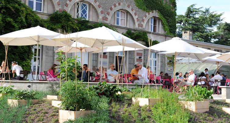 Trfihi Parks Parks Jardin Des Plantes Nantes