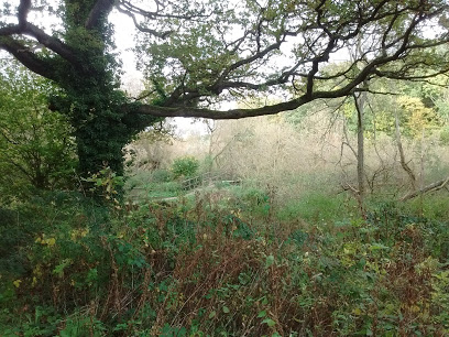 Brotherton Park and Dibbinsdale Local Nature Reserve