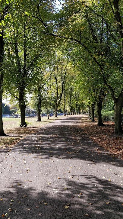 The Park ( dewsbury )