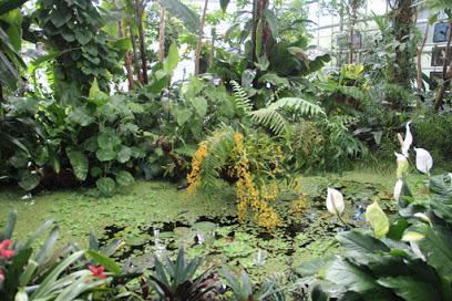 Förderverein Botanischer Garten Chemnitz