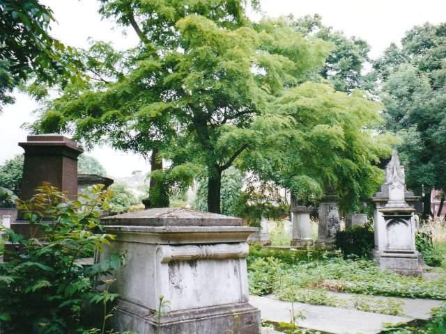 مقبرة تاور هامليتس بارك