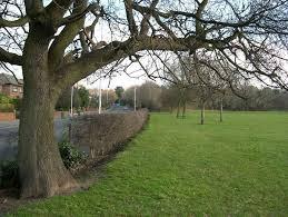 Walker Park, Prenton