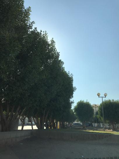 AL Raya Park