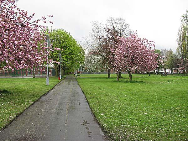 Gartside Gardens