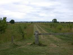 Cambourne Nature Reserve