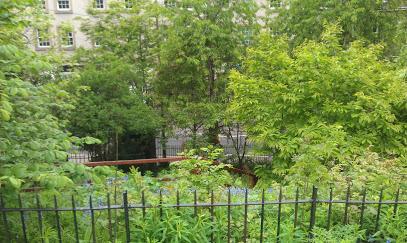 Geddes Gardens