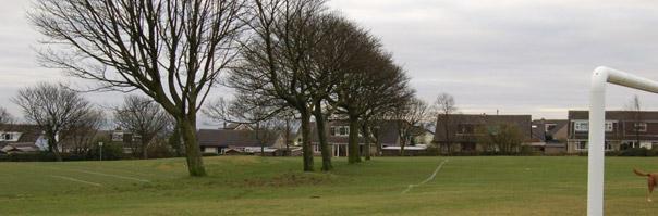 Foxhill Park