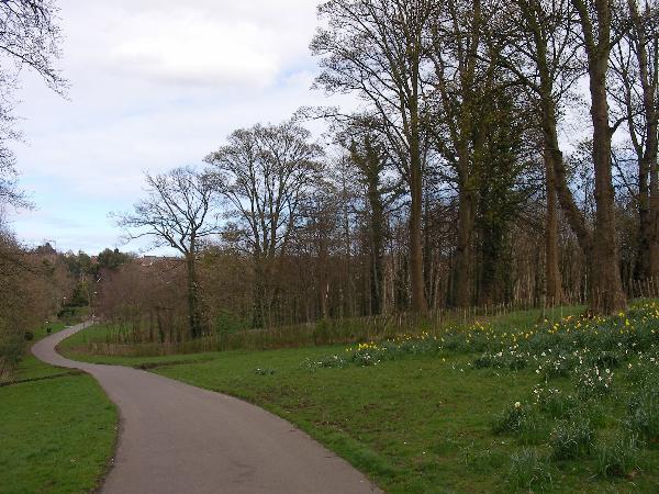 Orangefield Park