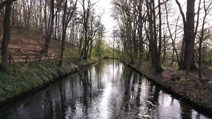 Reuschenberger Wald