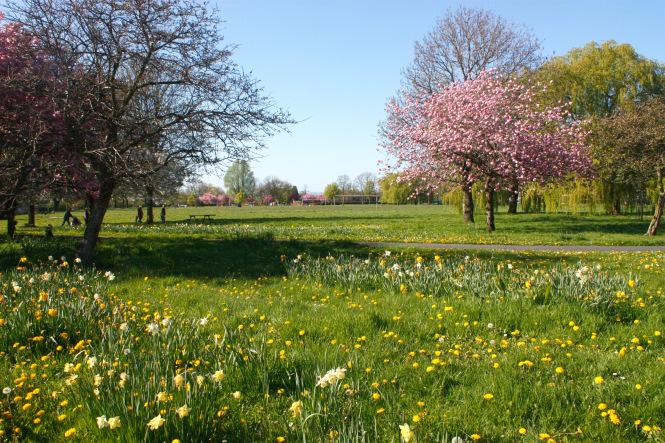 Gorton Park