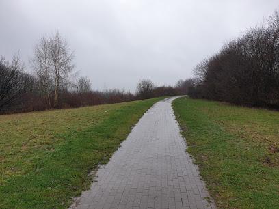 Park Königsgrube