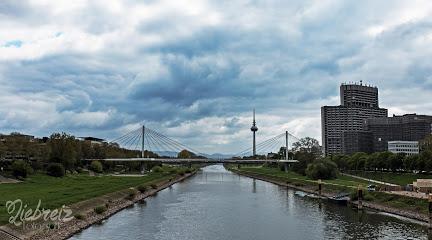 Neckarwiese Mannheim