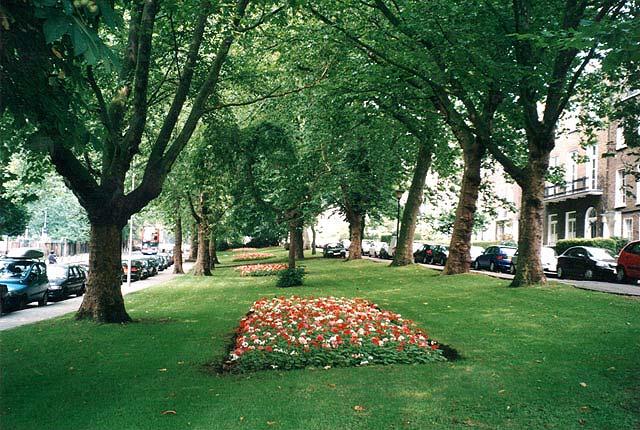 Grove Terrace Squares