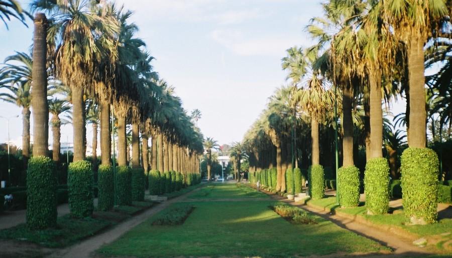 حديقة الإيسيسكو