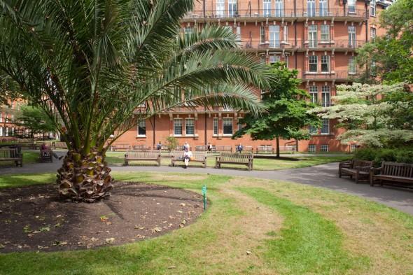 حدائق شارع مونت